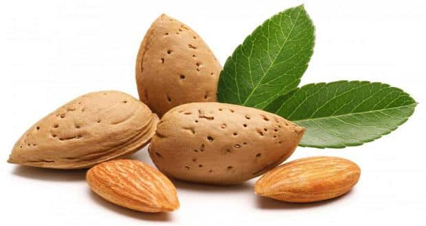 list of foods high in vitamin E